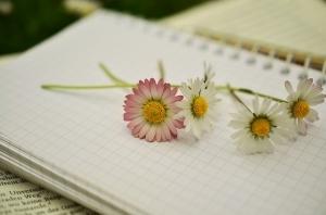 Notebook1405303_640